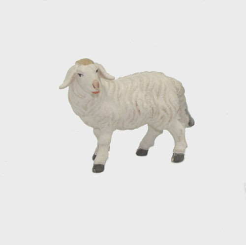 Zirbel 261 Schaf stehend linksschauend