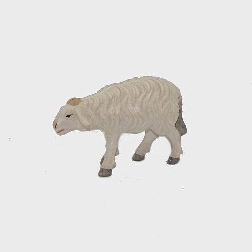Zirbel 260 Schaf stehend vorwärtsschauend