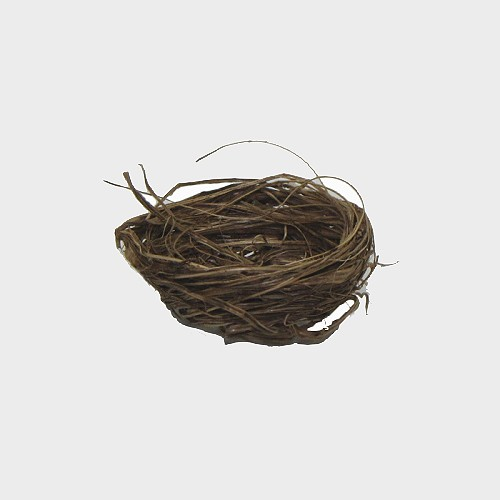 Vogelnest 3-3,5cm Durchmesser