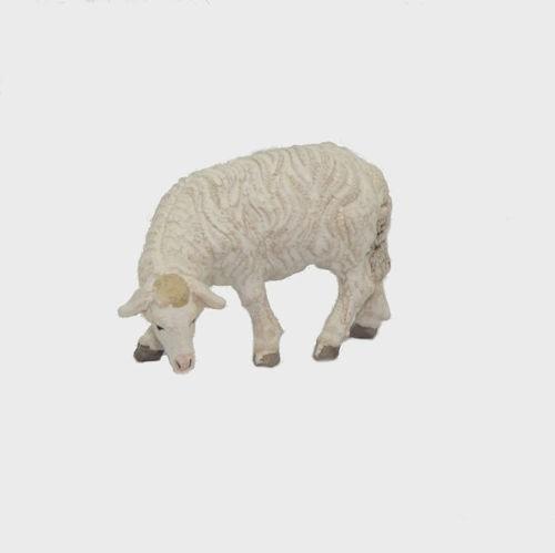 Zirbel 256 Schaf äsend linksschauend