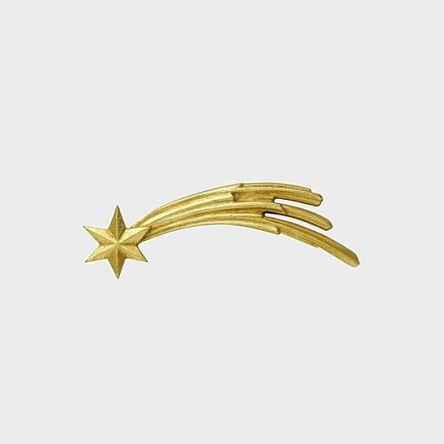 Zirbel 099 Kometstern