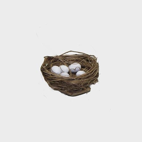 Vogelnest 3-3,5cm Durchmesser mit 5 Eier